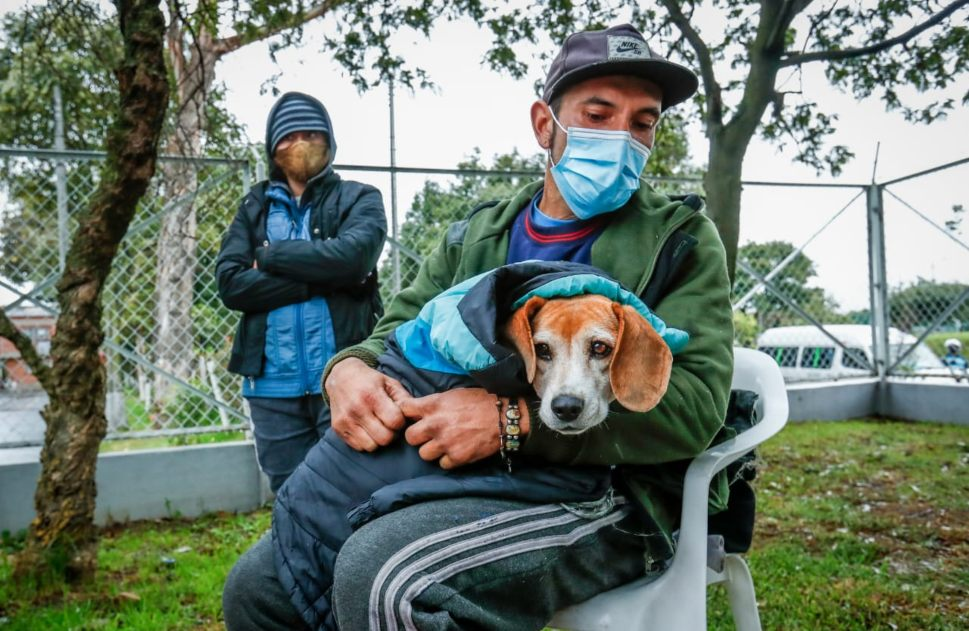 Atención animales de compañía de habitantes de calle