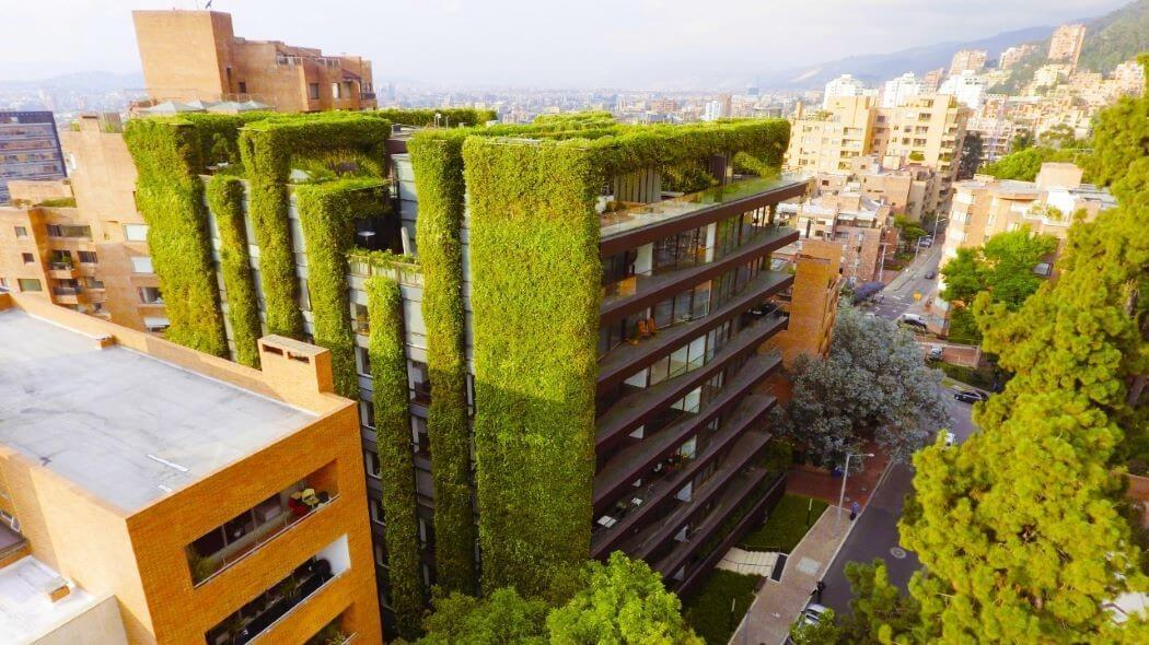 Imagen de un jardín vertical en Bogotá.