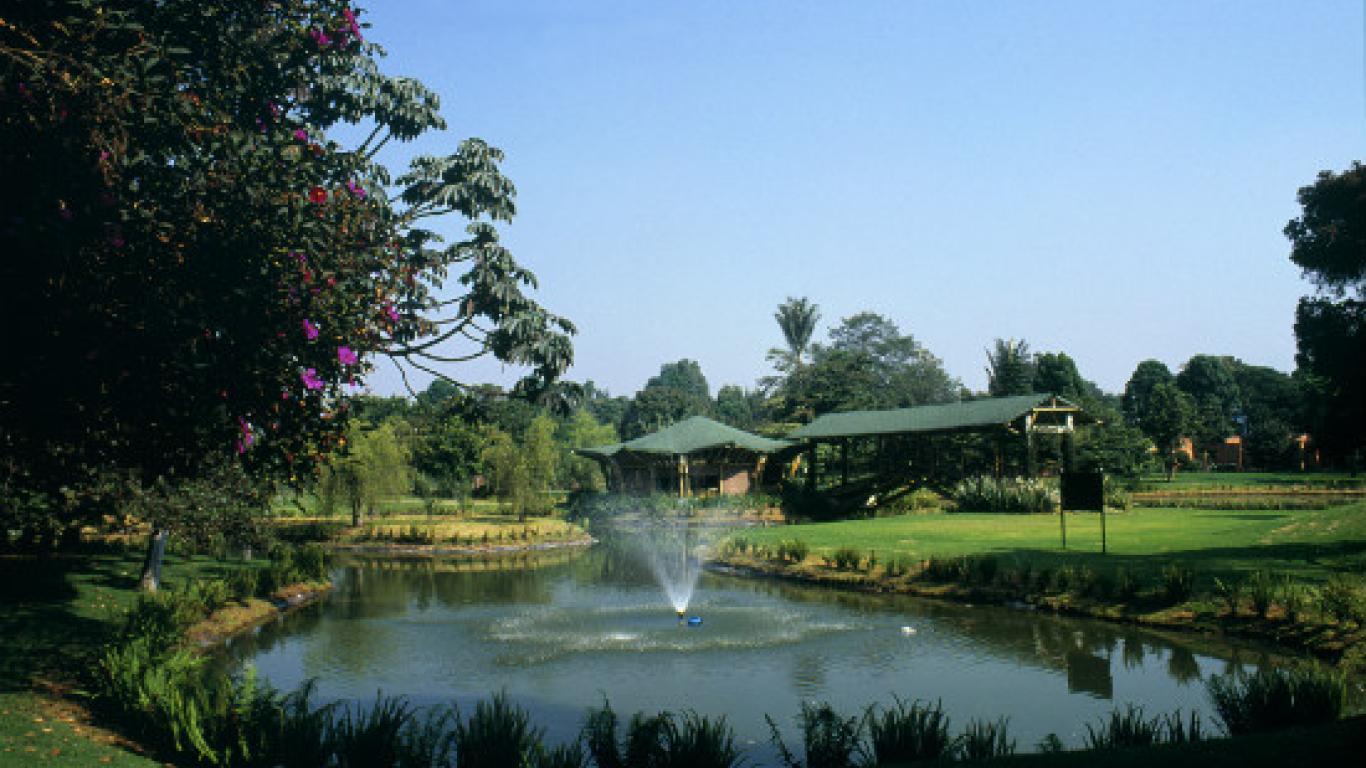 Conozca el Jardín Botánico de Bogotá, un espacio verde para ...