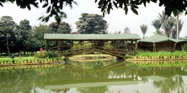 Actividades nocturnas gratuitas en el jard n bot nico for Actividades en el jardin botanico de caguas
