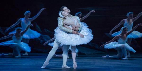 """Llega a Bogotá el English National Ballet con """"El lago de los cisnes"""""""