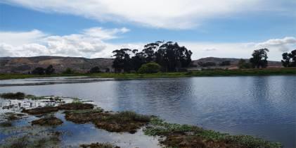 Humedal El Tunjo - Foto: Secretaría Distrital de Ambiente