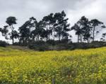 Bogotá Rural - Foto: Secretaría de Planeación