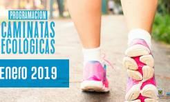 Caminatas ecológicas en Bogotá