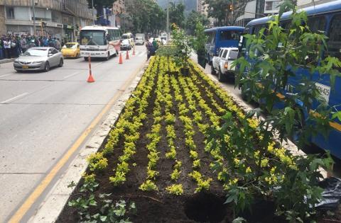 Embellecimiento Calle 19 - Foto: Prensa Alcaldía Mayor  / Arcecio Vera