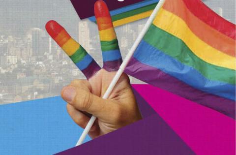 Consejo Consultico LGBTI - Imagen: IDPAC