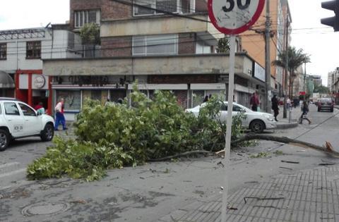 Vientos Bogotá - Foto: Prensa IDIGER