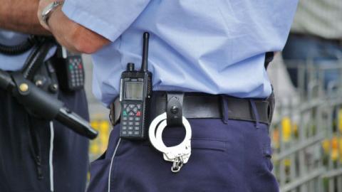 Guardia de seguridad - Foto: pixabay