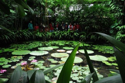 Herbario del jard n bot nico fue incluido en el mapa for Jardin botanico numero telefonico