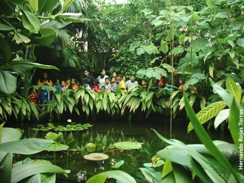 Bogot le apuesta al turismo con acento social for Actividades jardin botanico bogota