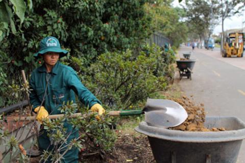 Jard n bot nico de bogot un ejemplo de cultura ambiental for Actividades jardin botanico bogota