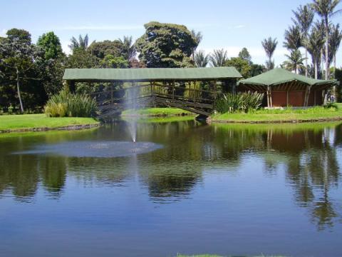 Bogot humana abrir la ruta del agua en el jard n for Jardin botanico bogota