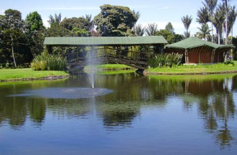 Jardín Botánico iniciará programa para obtener el 30% de la ...