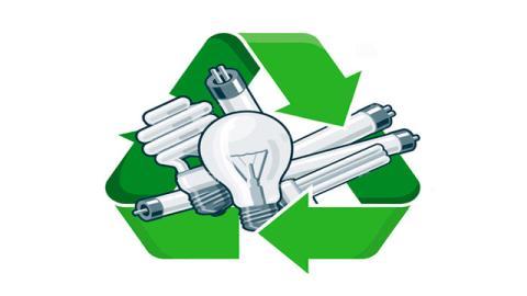 Jornada de reciclaje - Foto: Ledbox News