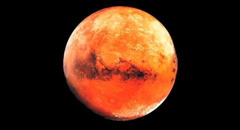 Carpa Marte