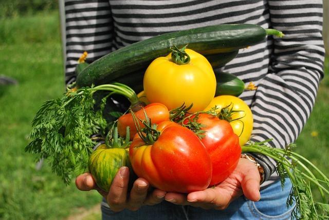 Una persona sosteniendo frutos