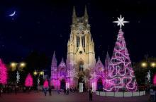 Haga parte de la Navidad Humana hoy sábado