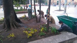 Jornada de limpieza espacio público - Foto: Prensa Secretaría de Gobierno