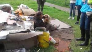 Bogotá protege a los animales. Foto: Protección Animal