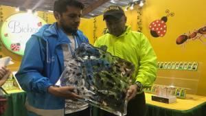 Incautan en Feria del Libro productos elaborados con fauna exótica - Foto: Secretaría de Ambiente
