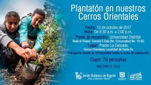 Con la plantación más grande del año se quiere recuperar los Cerros Orientales