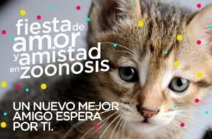 Jornada de adopción de perros y gatos - Imagen: Secretaría de Salud