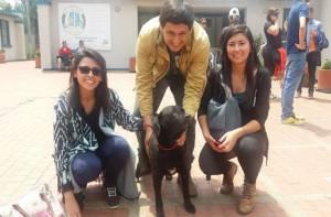 Adopción de animales - Foto: Prensa Alcaldía Mayor de Bogotá / Lesly Segura