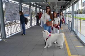 Ampliación Estación Toberín - Foto: Prensa TransMilenio