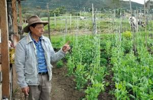 Medidas sociales en Doña Juana - Foto: Uaesp