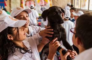 Club de animales - Foto: Secretaría Educación
