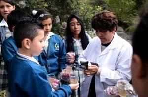 Clase de ciencias naturales, colegio Brazuelos - Foto: Prensa Secretaría de Educación