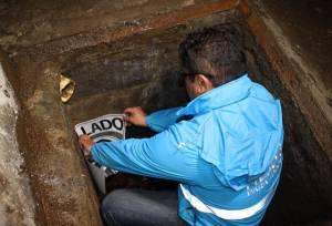 Operativos a frigoríficos en Kennedy - Foto: Prensa Secretaría de Ambiente