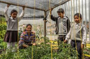 Huertas escolares, un proyecto para crear conciencia estudiantil