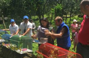 Rehabilitación animales silvestres - Foto: Secretaría de Ambiente