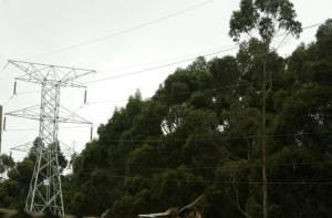 Torre de Energía - Foto: Alcaldía Mayor de Bogotá