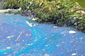 Aguas contaminadas - Foto: Secretaría de Ambiente