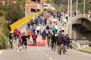 Alfabetización IDRD - Portal Bogotá - Foto:idrd.gov.co