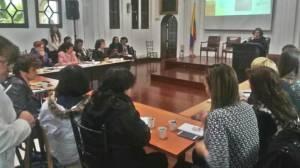 Consejo Local de Mujer y Género: Elecciones el 17 de diciembre 2017 - Foto: SDM