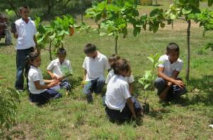 Cuidadores ambientales - Foto: www.funazucar.org