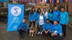 Consejo Local de Protección Animal - Foto: Portal Bogotá