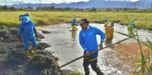 Nueva jornada de limpieza en el Humedal Tunjo- Foto: Alcaldía Local de Tunjuelito