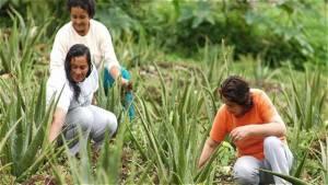 Mujer Rural y Campesina - Foto: Contagio Radio