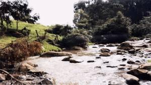 Quebrada Fucha Usme - Foto: Secretaría de Ambiente