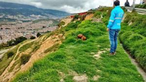 Monitoreo en zonas de ladera - Foto:Comunicaciones Idiger
