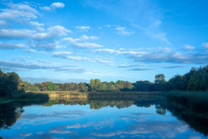El recorrido inicia en el humedal Santa María del Lago donde podrán disfrutar del maravilloso paisaje que ofrece este reconocido