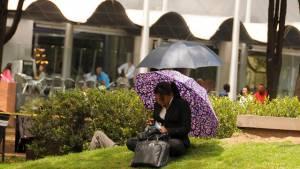 Bogotá contará este año con 57 puntos de wifi gratuito. Foto: Andrés Sandoval.