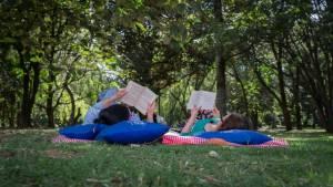 Lectura Bajo los Arboles