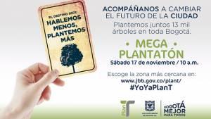 Con la 'Megaplantatón' se plantarán más de 13 mil árboles por toda la ciudad