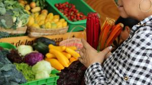 Mercado Campesino - Foto: Secretaría de Desarrollo Económico