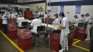 Plantas ensambladoras de refrigerios escolares - Foto: Prensa Secretaría de Educaión